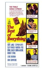 The Best of Everything 1959 DVD - Hope Lange / Stephen Boyd
